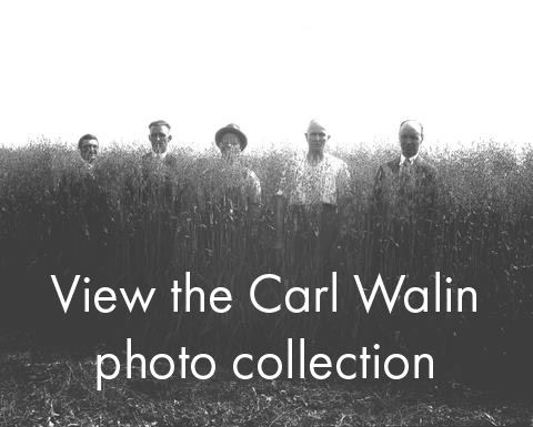 carl walin photo collection