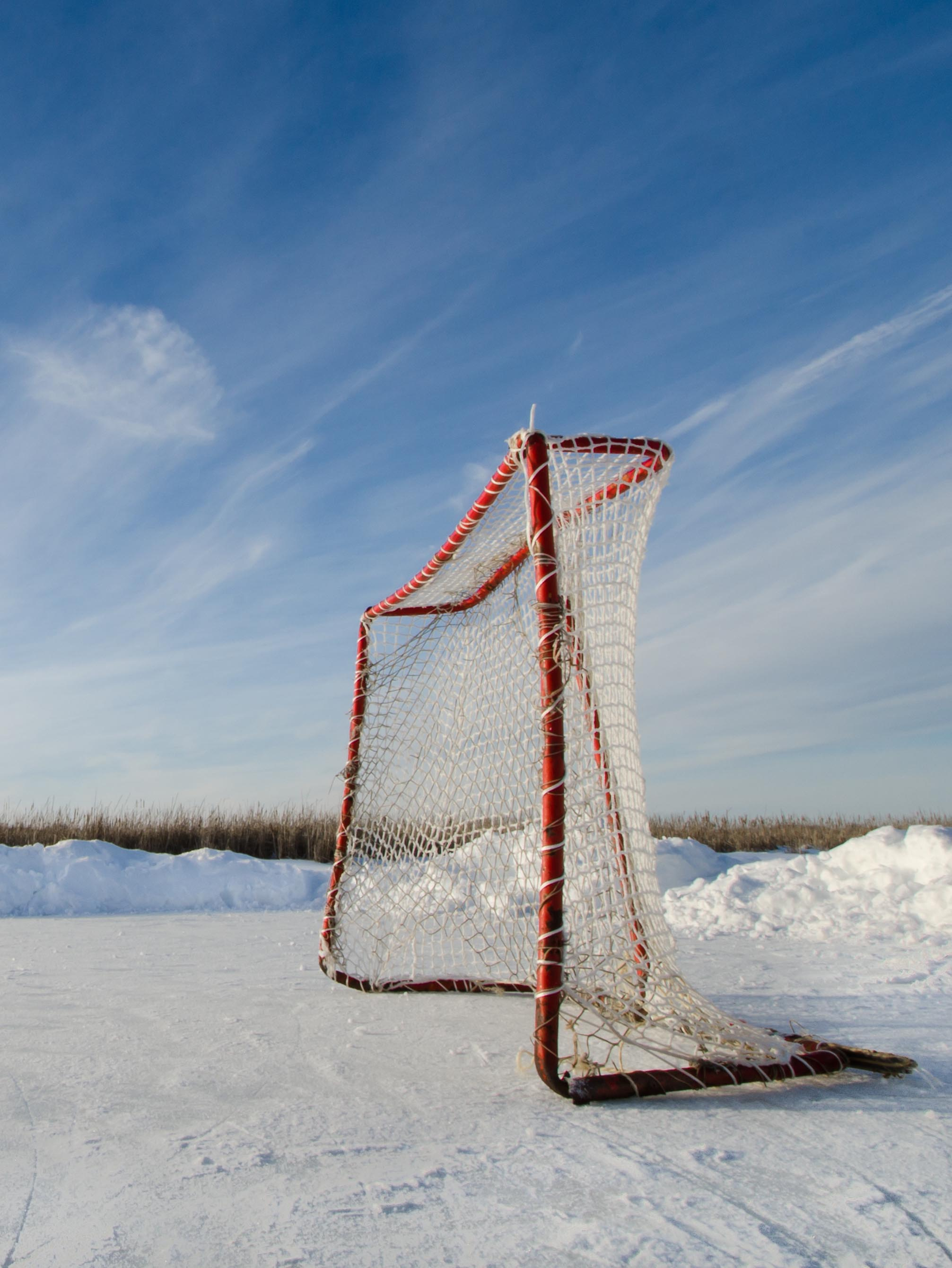 hockey-net-newsflash