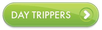 Day Trippers Button